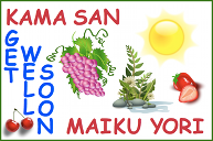 A get well soon card, partly in Japanese, with grapes, plants, a bright yellow sun and some fruit