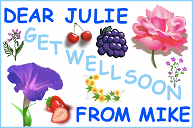 A get well soon card with flowers and fruit
